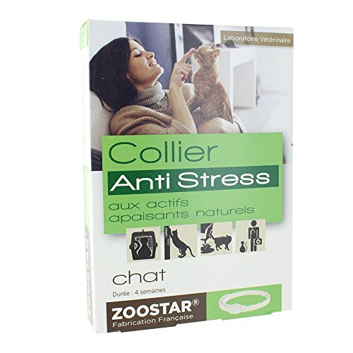 L'antistress chat ZOOSTAR